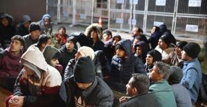 'Yunan askerlerince darbedilip Türkiye'ye gönderilen' 252 sığınmacı Edirne'de yakalandı