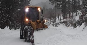 Karla mücadele hızlandırılıyor
