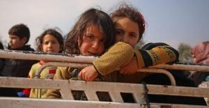BM: Son iki ayda İdlib'den kaçanların sayısı 800 bini geçti