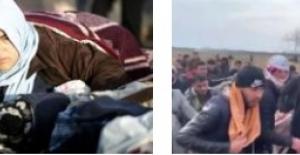 Mülteci krizi: 'Yunanistan her şeyimizi alıp bizi Edirne'ye geri yolladı'