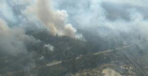 Ukrayna'nın Çernobil Bölgesindeki Orman Yangını söndürülemiyor