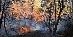 Ukrayna Çernobil Bölgesi'ndeki yangın 8 gündür söndürülemedi