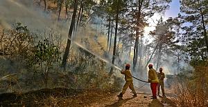Afrika sıcakları başladı, orman yangınlarına dikkat!..