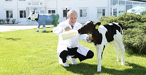 Sütaş Dünya Süt Günü'nü Kutluyor