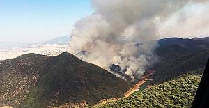Bakan Pakdemirli: 12 ilde meydana gelen 19 orman yangınından 15'i kontrol altında, 3'ü söndürüldü