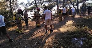 Heybeliada'da çıkan yangınlar, yapılan müdahaleyle sona erdirildi