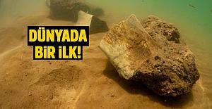 Yamula Barajı'nda bulundu: 7.5 milyon yıllık