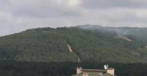 İstanbul Aydos Ormanı'nda yangın!