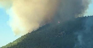 İzmir Menderes ilçesinde orman yangını!