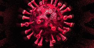 Koronavirüs hakkında çıkan haber sayısı 34 milyonu geçti