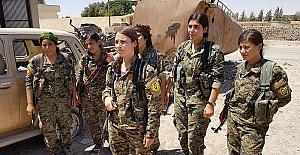 Irak güvenlik güçleri, Şengal'den çıkmayı reddeden 4 PKK'lıyı tutukladı