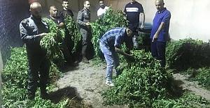 Siyonizm'in (İsrail'in) Uyuşturucu Trafiği ve PKK-PYD'nin Beyaz Zehir Ticareti