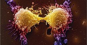 4 Şubat Dünya Kanser Günü: Covid salgını, kanserle mücadeleyi nasıl etkiledi?