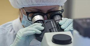 Araştırma: D vitamini koronavirüs ölümlerini yüzde 60'a kadar azaltabilir