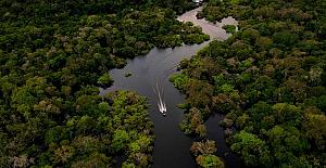 Facebook'ta satılık Amazon yağmur ormanları