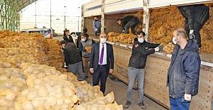 Mudanya Belediyesi 80 Ton patatesi halka dağıtıyor