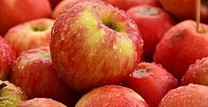 Rusya 63 ton Türk elmasını geri gönderdi