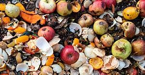 Türkiye'de her yıl 7,7 milyon ton yiyecek çöpe atılıyor