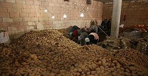 Ekonomik gerçek: Bedelsiz patates dağıtımı izdihama neden oldu!
