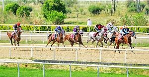 Nilüfer Belediye Başkanlığı Koşusu'nun galibi Kamus
