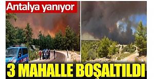 Manavgat'ta orman yangını. 3 mahalle boşaltıldı