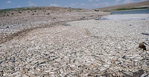 Konya'nın Akören ilçesindeki May Barajı'nda sular çekildi