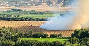 Diyarbakır'daki 7 Bin yıllık tarihi Hevsel Bahçeleri'nde yangın