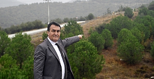 Osmangazi'de bir milyon fidan ormana dönüşüyor